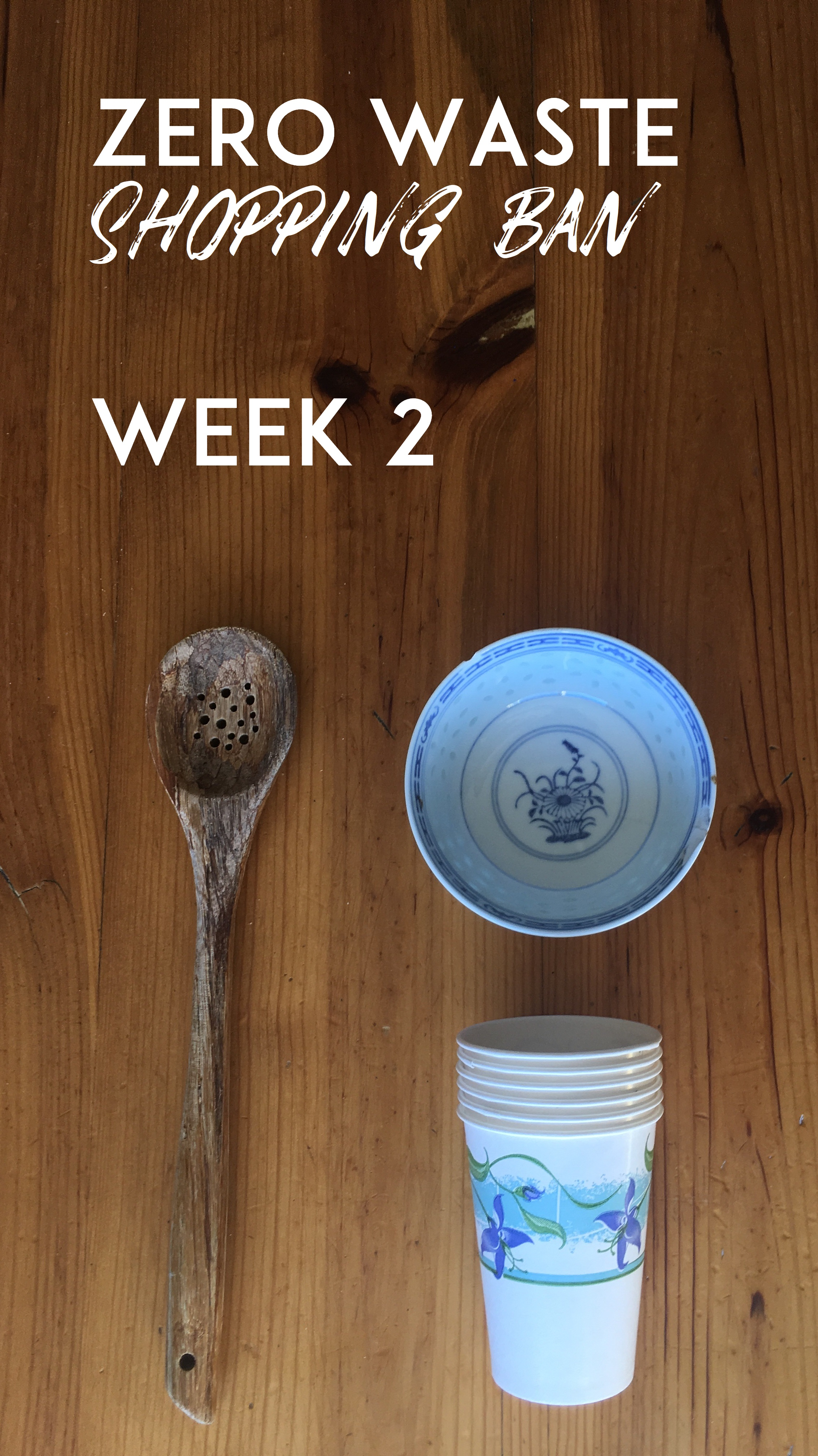 week2thumb.jpg