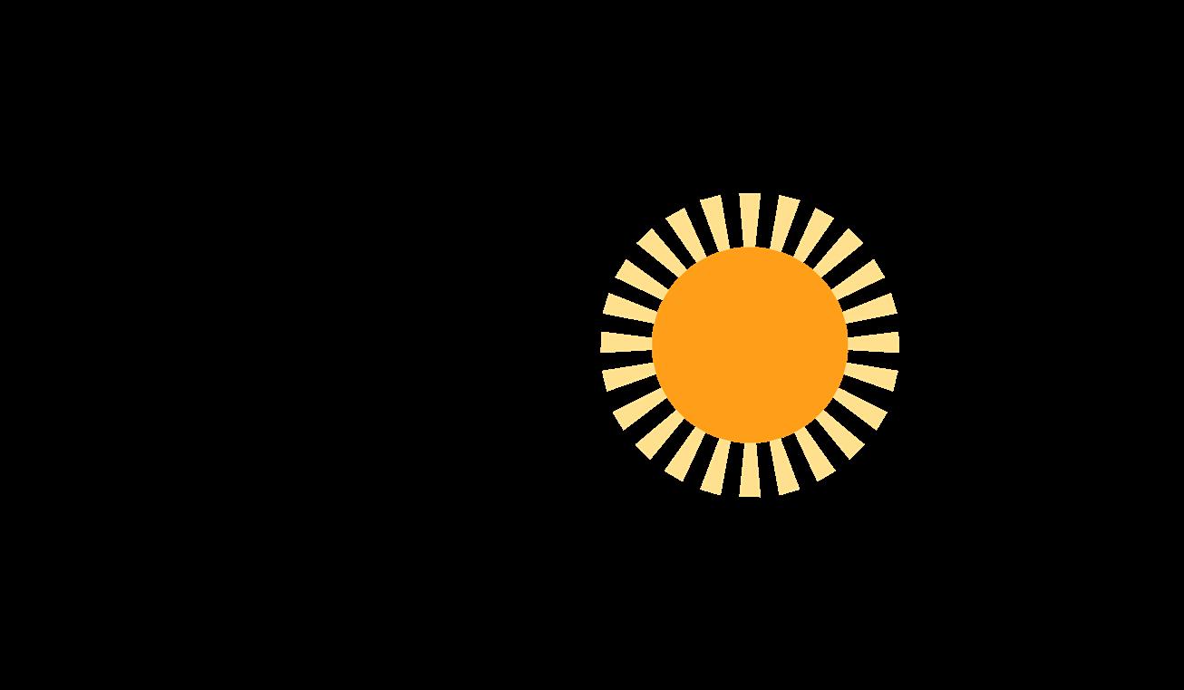 Vizorsun Logo.png