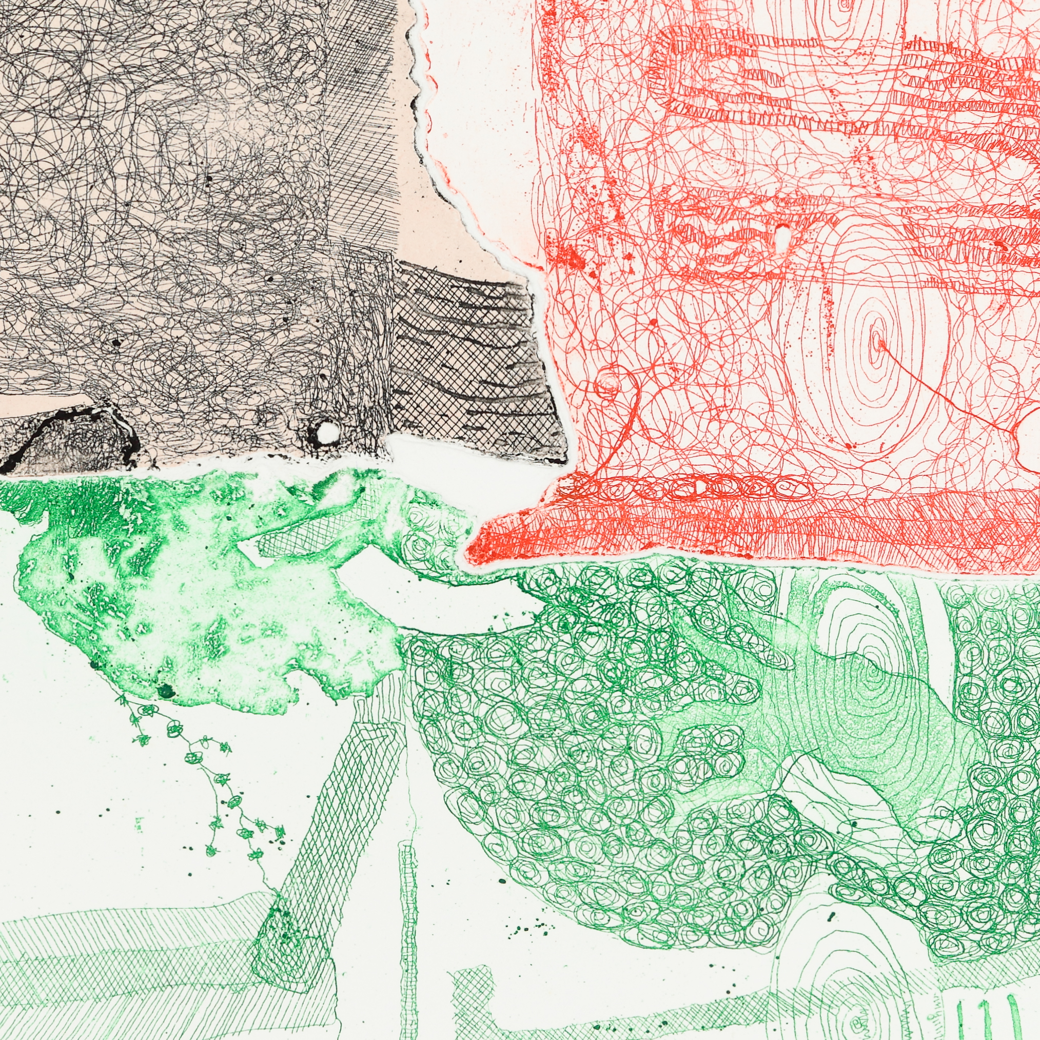 Close up section of a semi-abract line etching using delicate green, red and black lines.