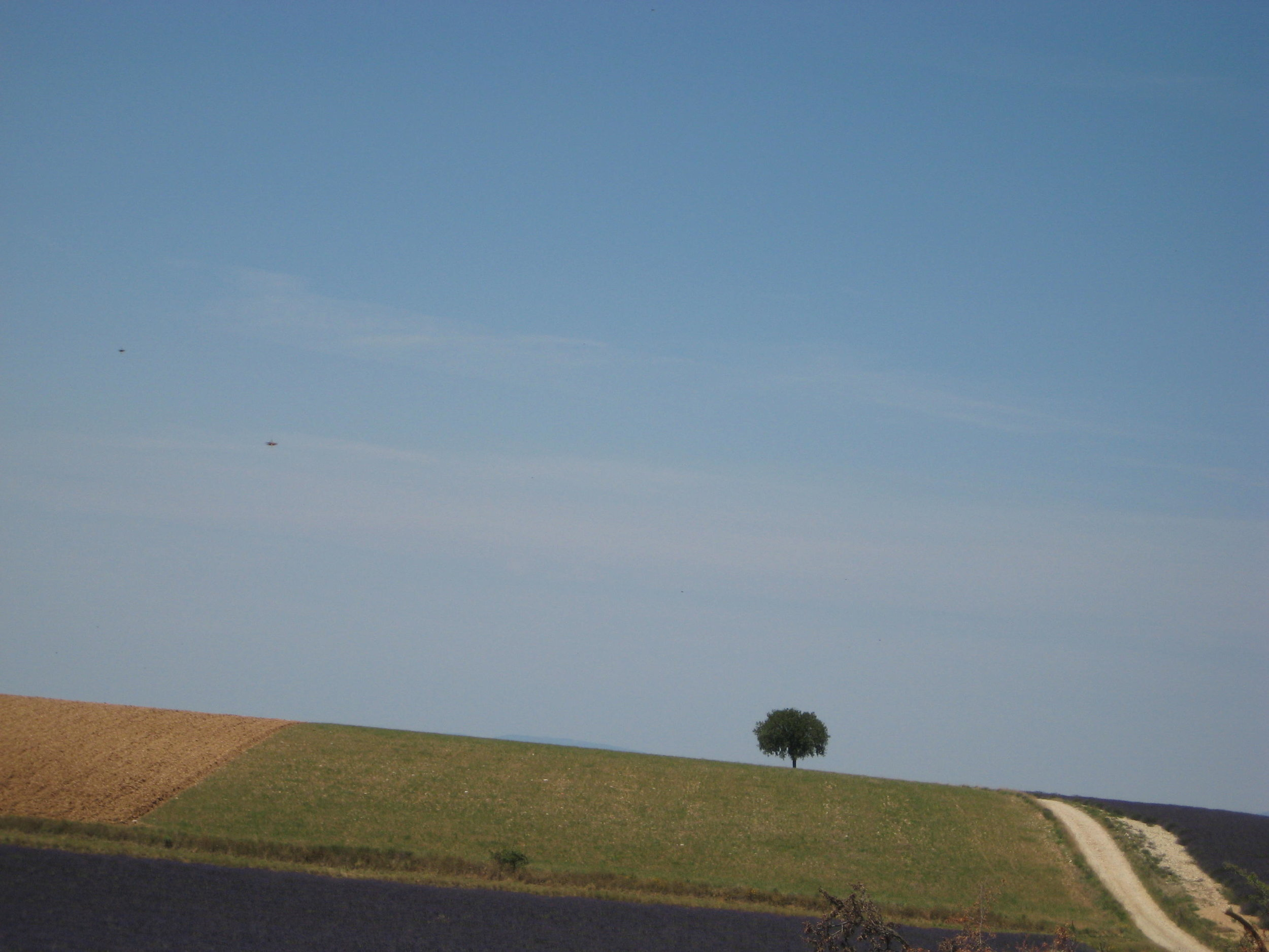 a sunny road.jpg
