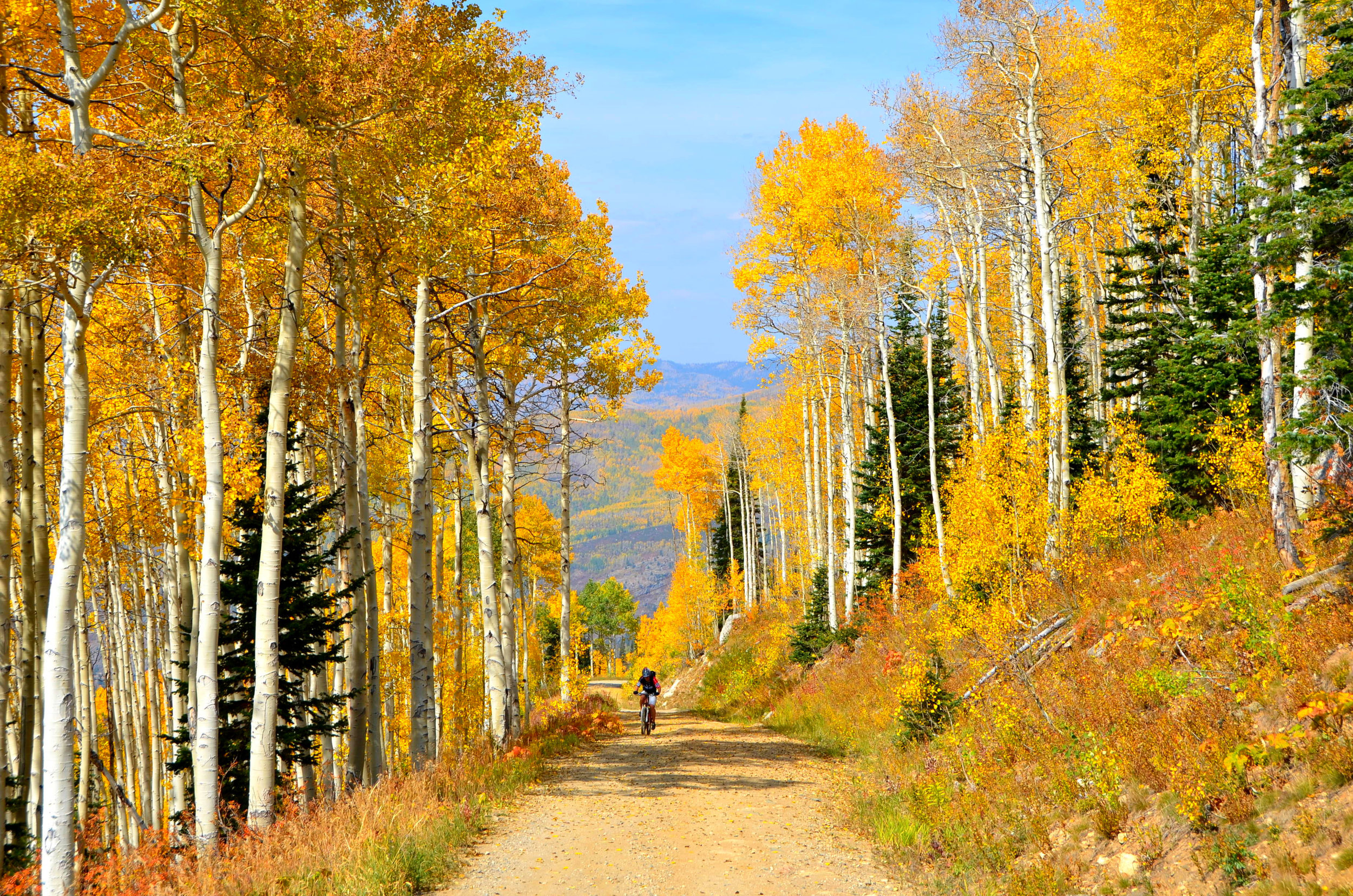 Fall Hike Steamboat Sept 2012-018.JPG