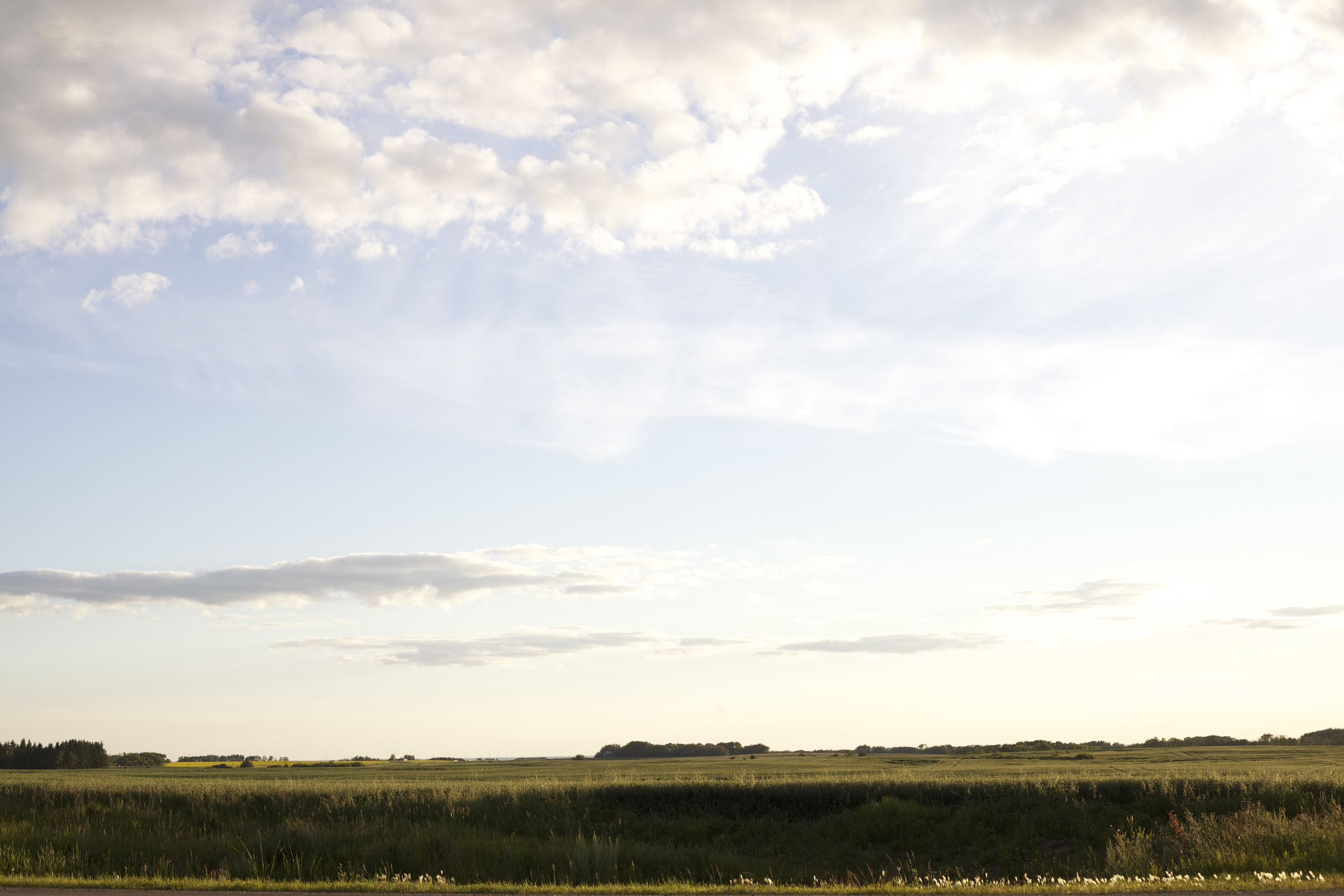 landscape.jpeg