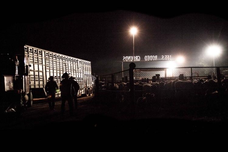 late night stock.jpg