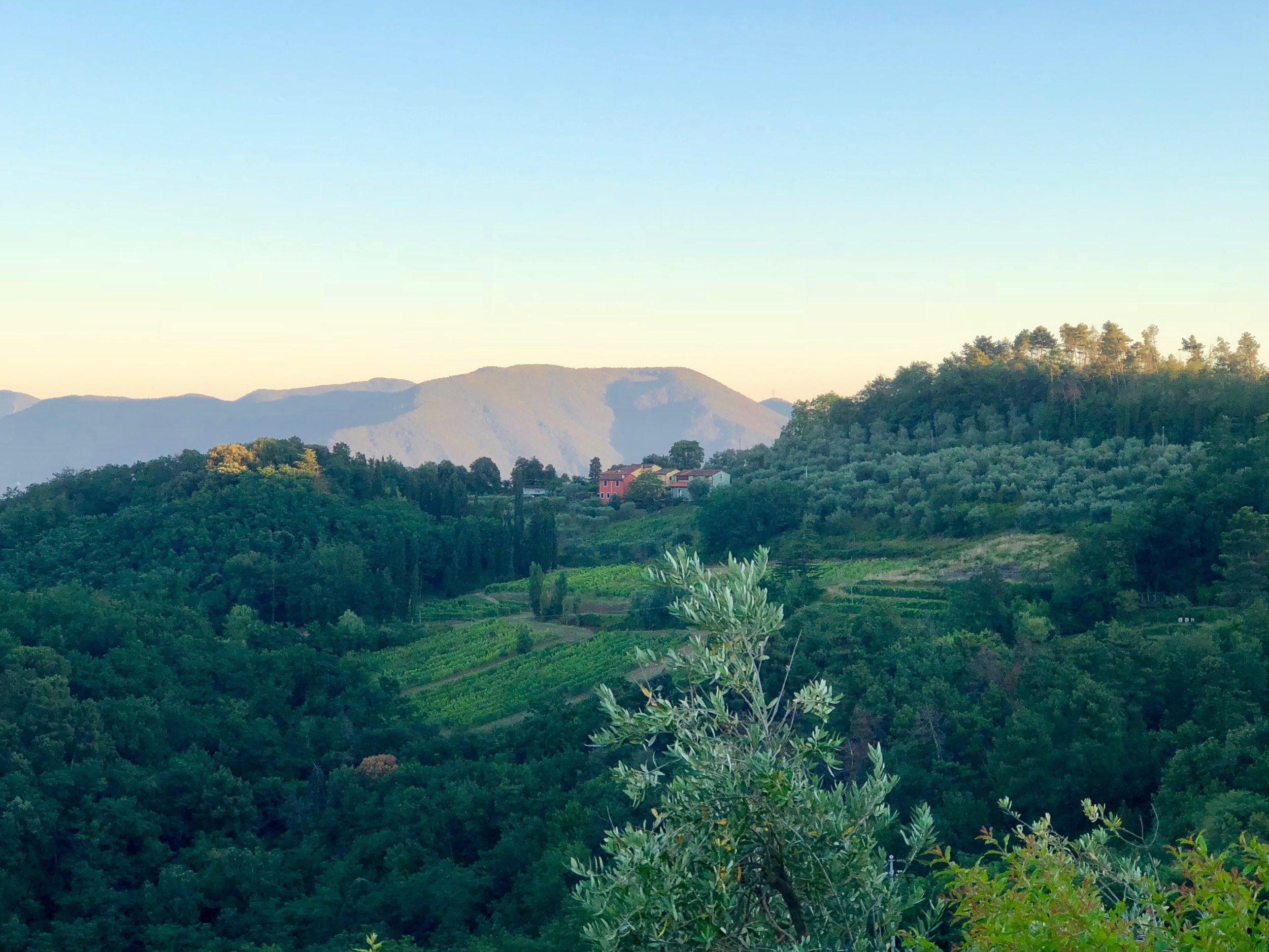 view from Il Borghino retreat center.JPG
