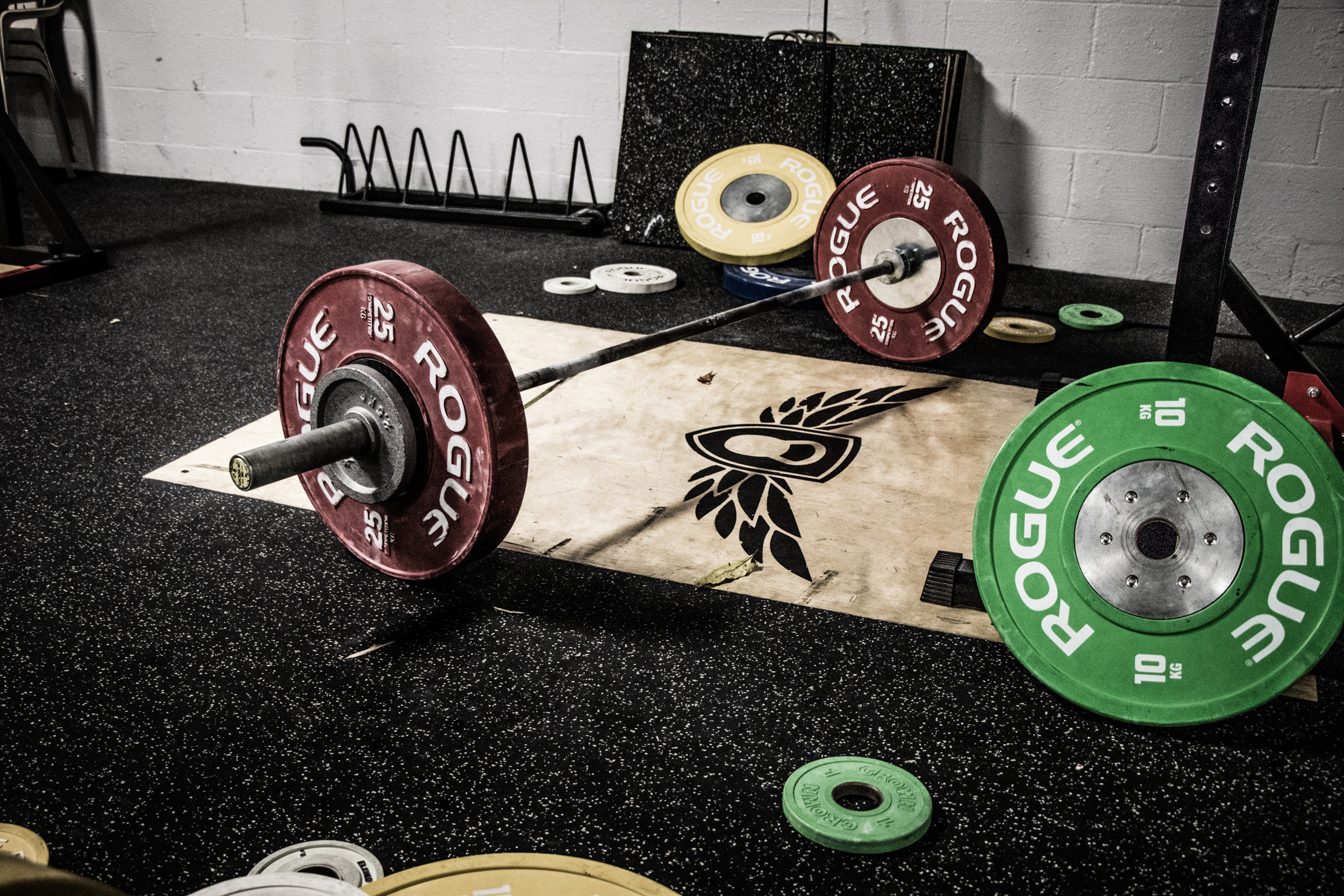 Facility - We have everything you need to train in weightlifting, from kilogram and pound bumper plates to needle-bearing barbells, platforms, squat racks, jerk blocks, and a wide variety of accessory equipment.