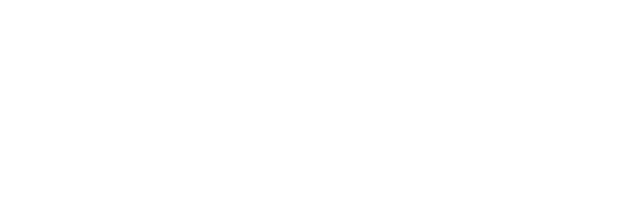 2019 Arctic Crane - White.png