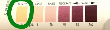 ketosis test strip color chart
