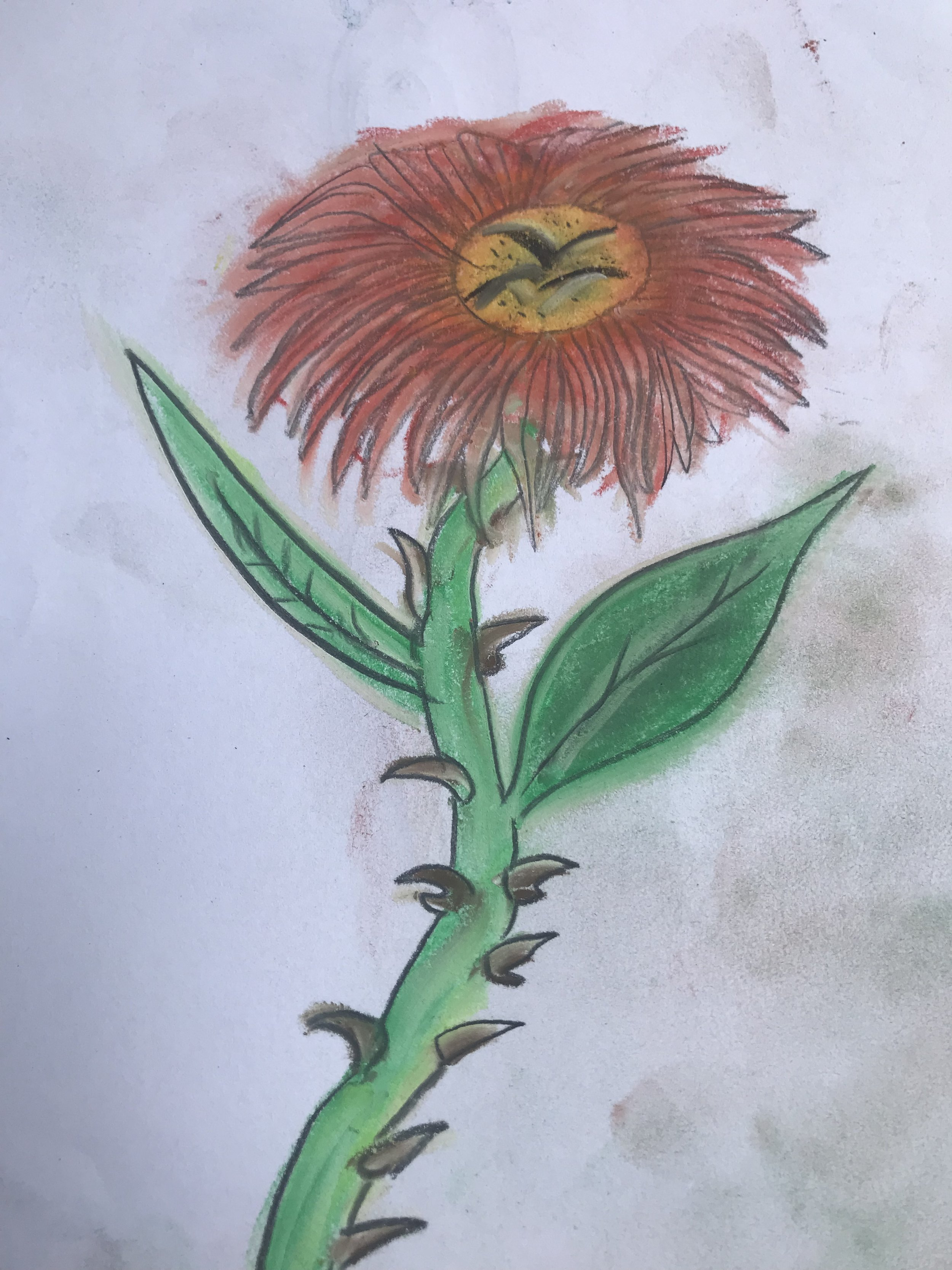 art therapy prickly pastel flower drawing