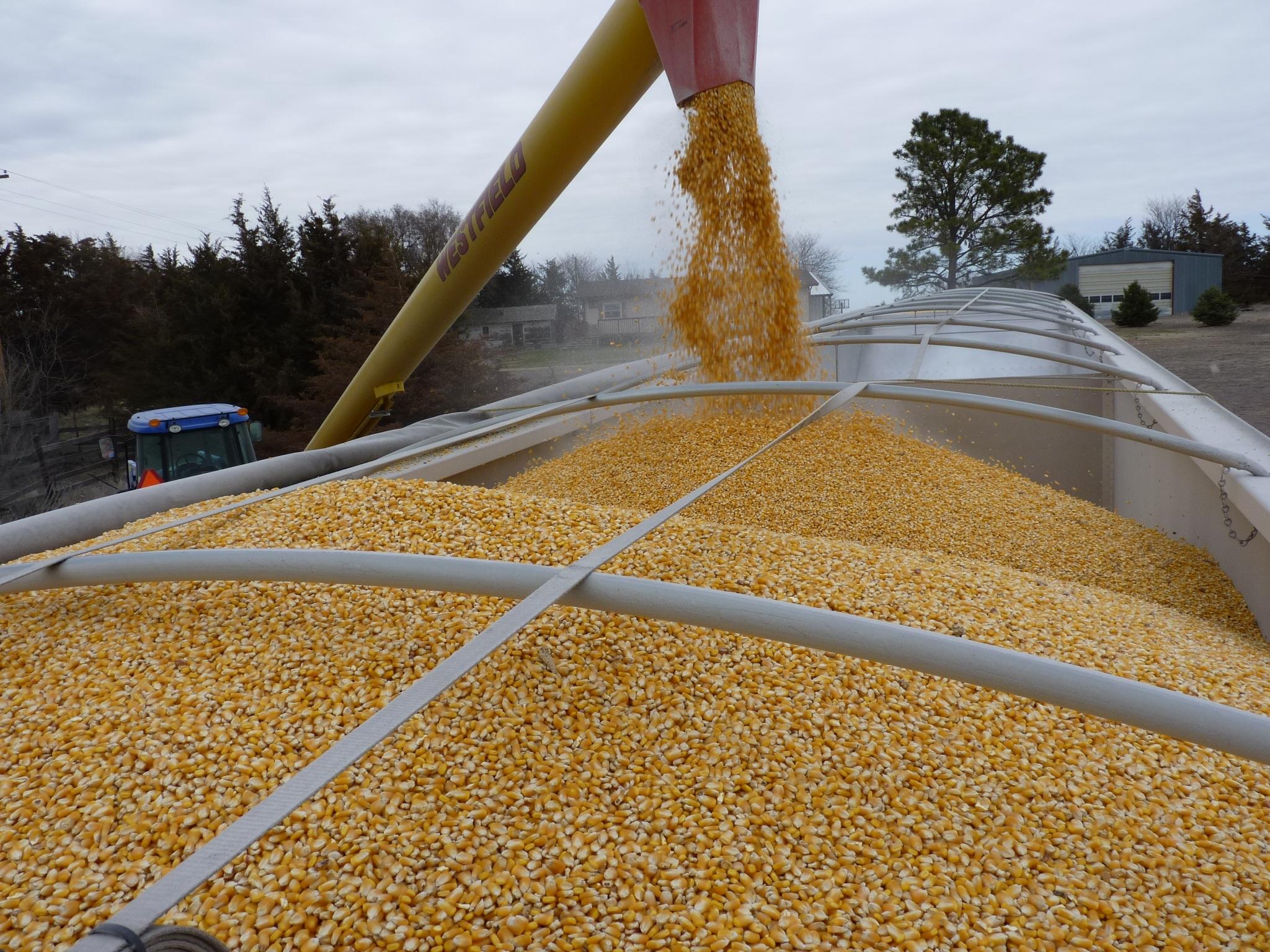 A blockchain trade a first ever in the grain trade   Ontario Farmer  1 February 2019