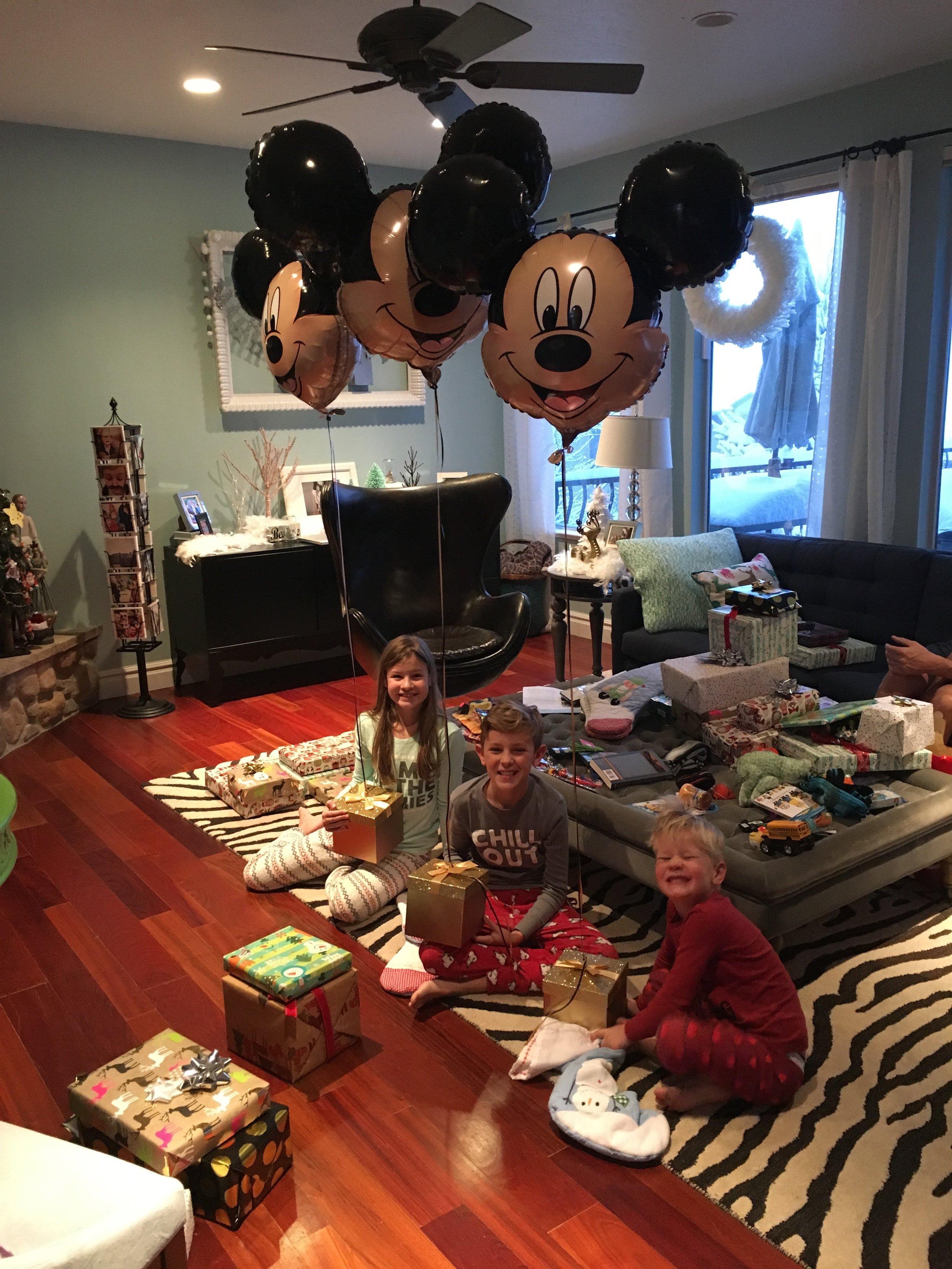 Disneyland Christmas Present