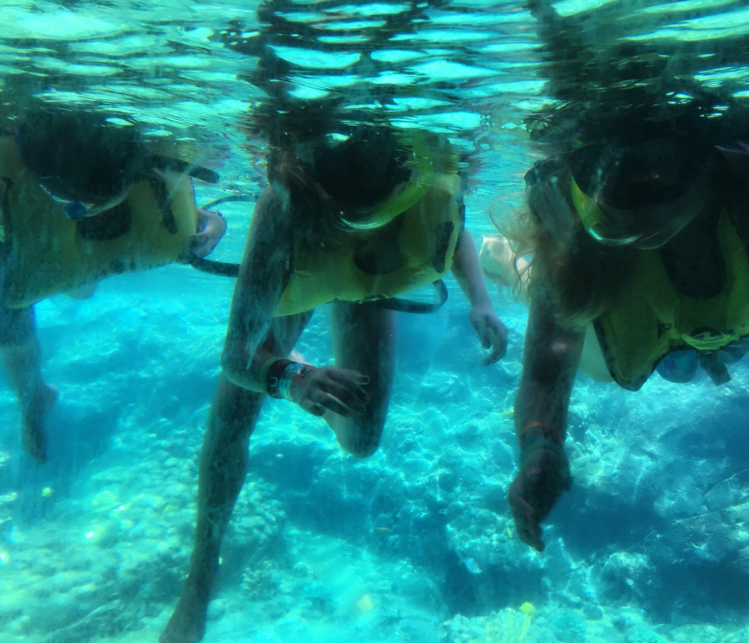 Disney Aulani Rainbow Reef Viewing