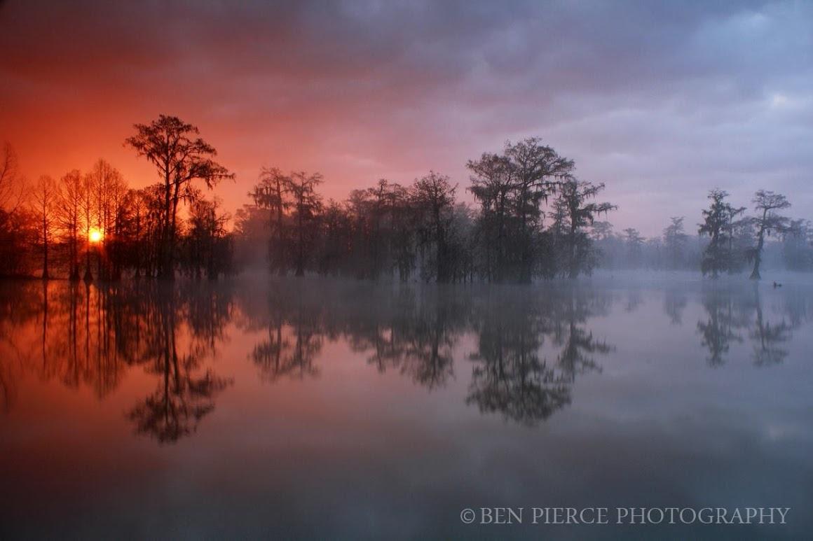 swamp-snaps-2016-036.jpg
