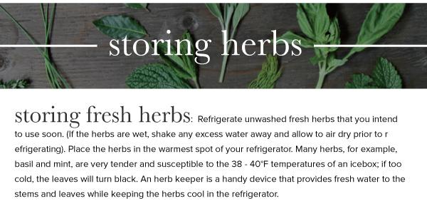 Herbs_v1_12.jpg