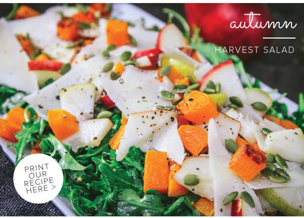 Harvest_Salad_v2_12.jpg