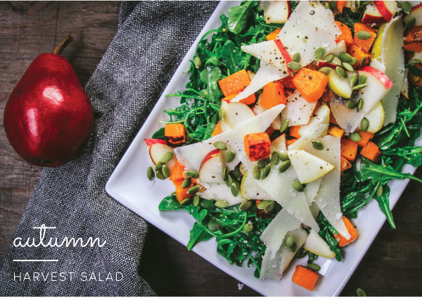 Harvest_Salad_v2_01.jpg