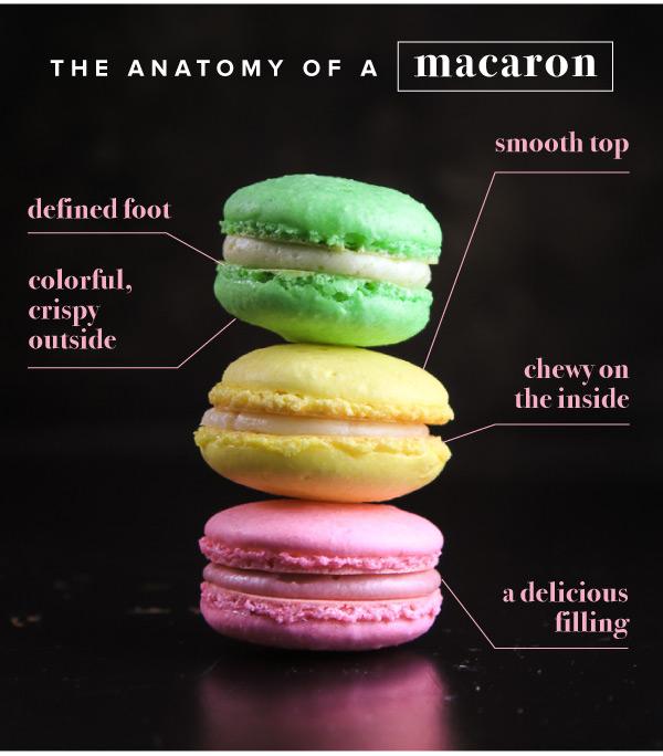 Macarons_v2_04.jpg