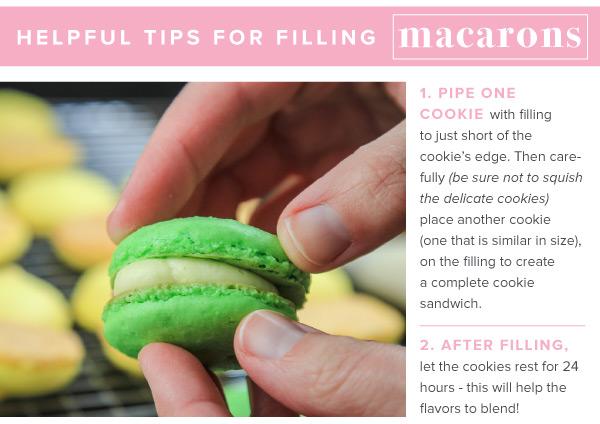 Macarons_v2_12.jpg