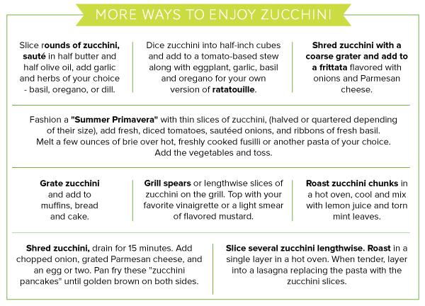 Zucchini_v1_13.jpg