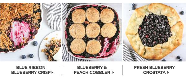 Blueberries_v2_03.jpg