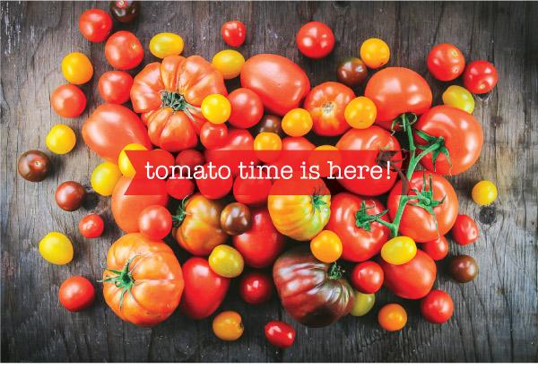 Tomatoes_2019_v2_01.jpg