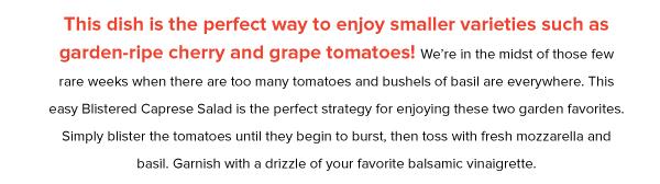 Tomatoes_2019_v2_10.jpg