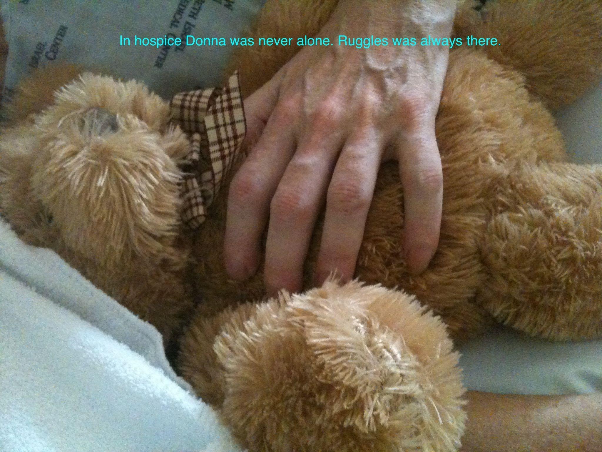 Donna Hospice Hand Teddy – Version 2.jpg