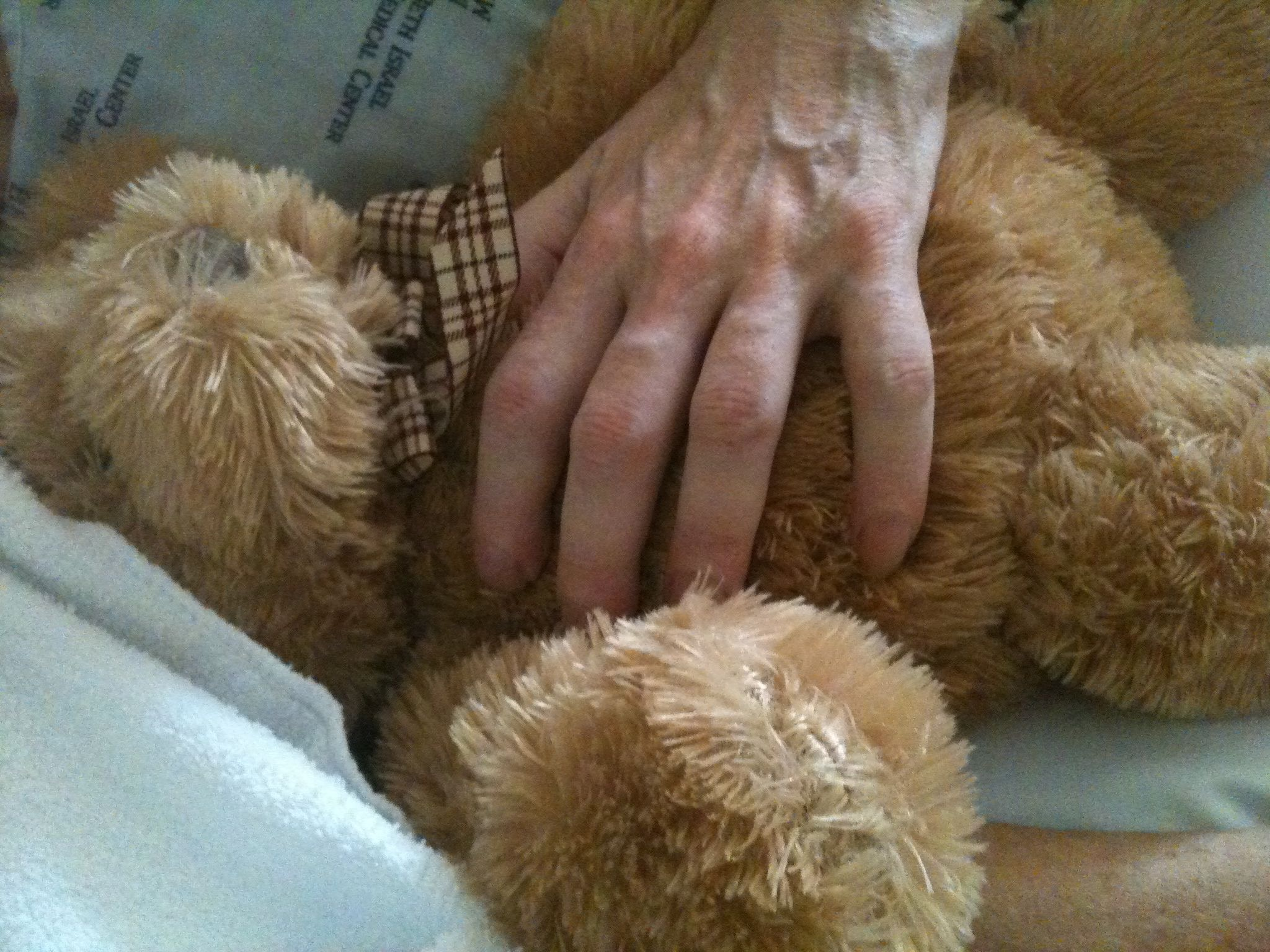 Donna and Ruggles In Hospice