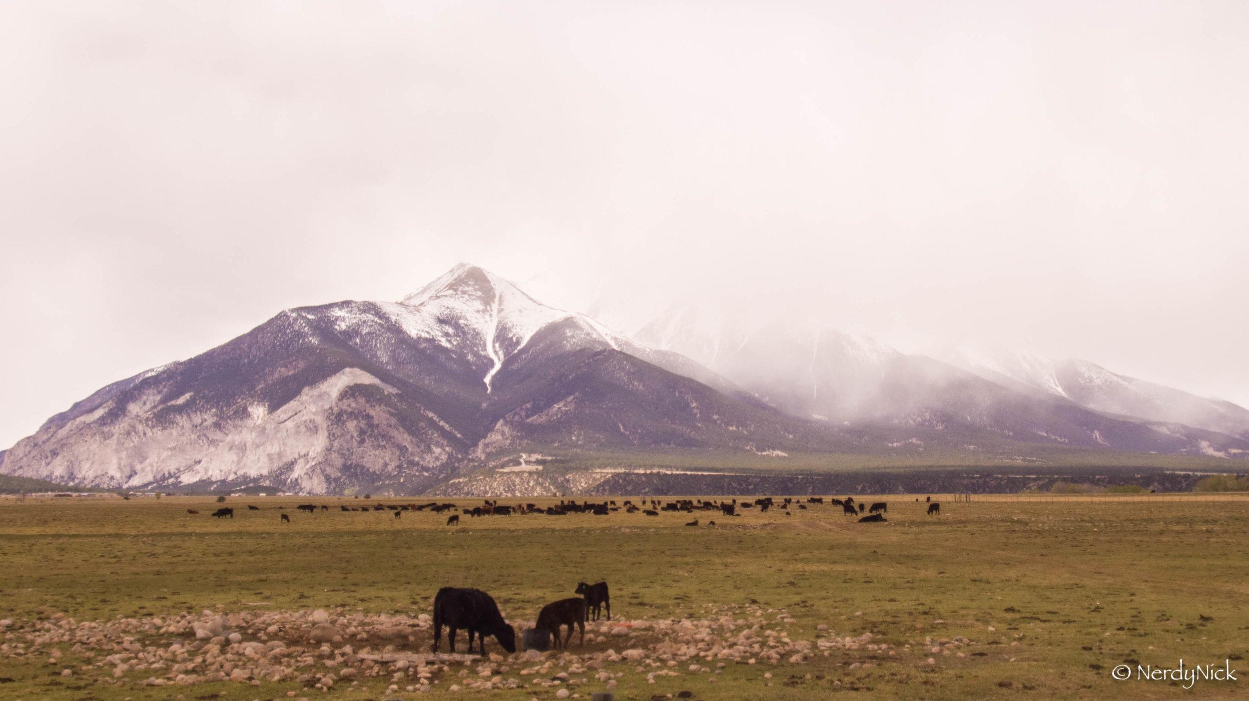 Snow capped mountains of Buena Vista Colorado