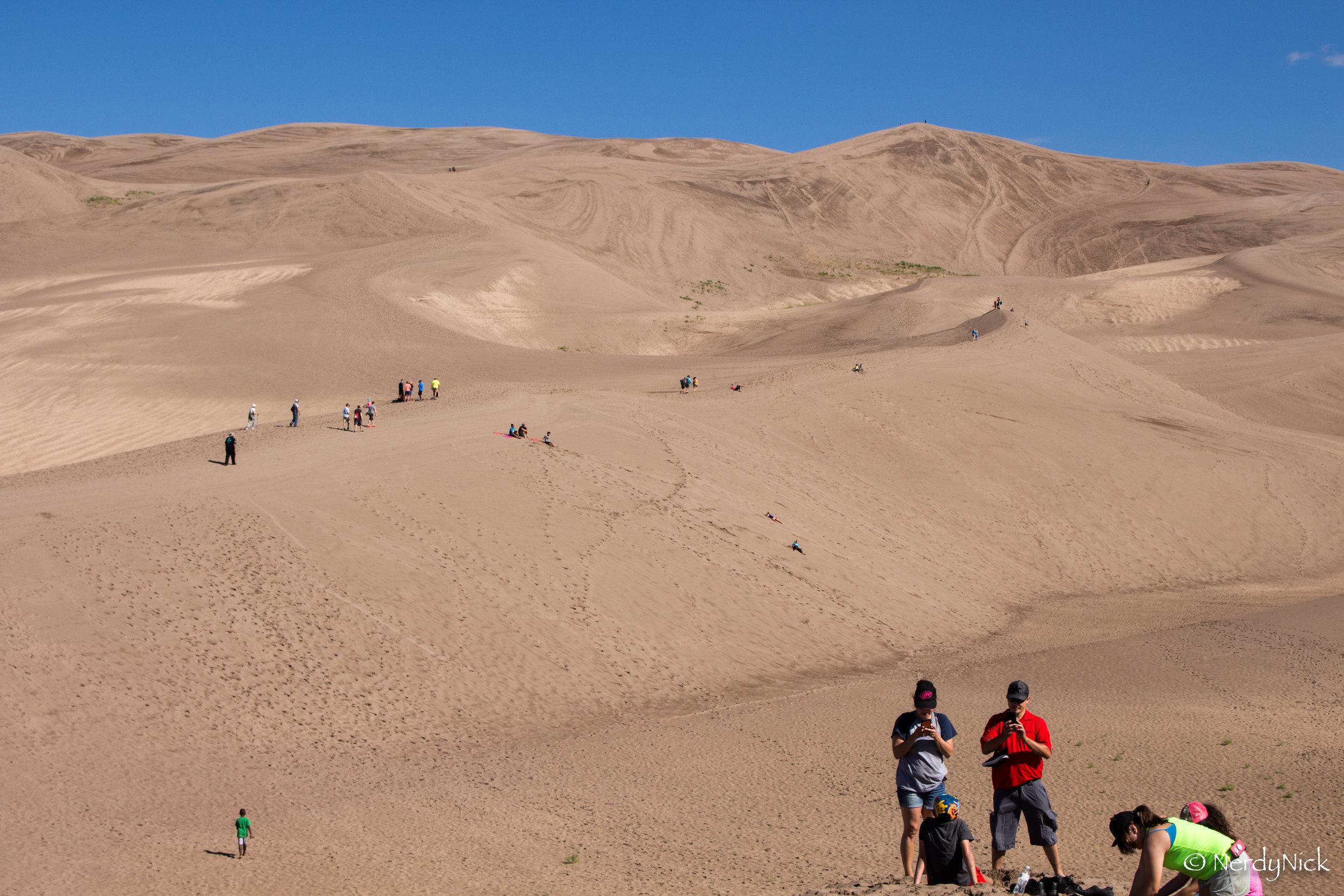 Sledding on the dunes