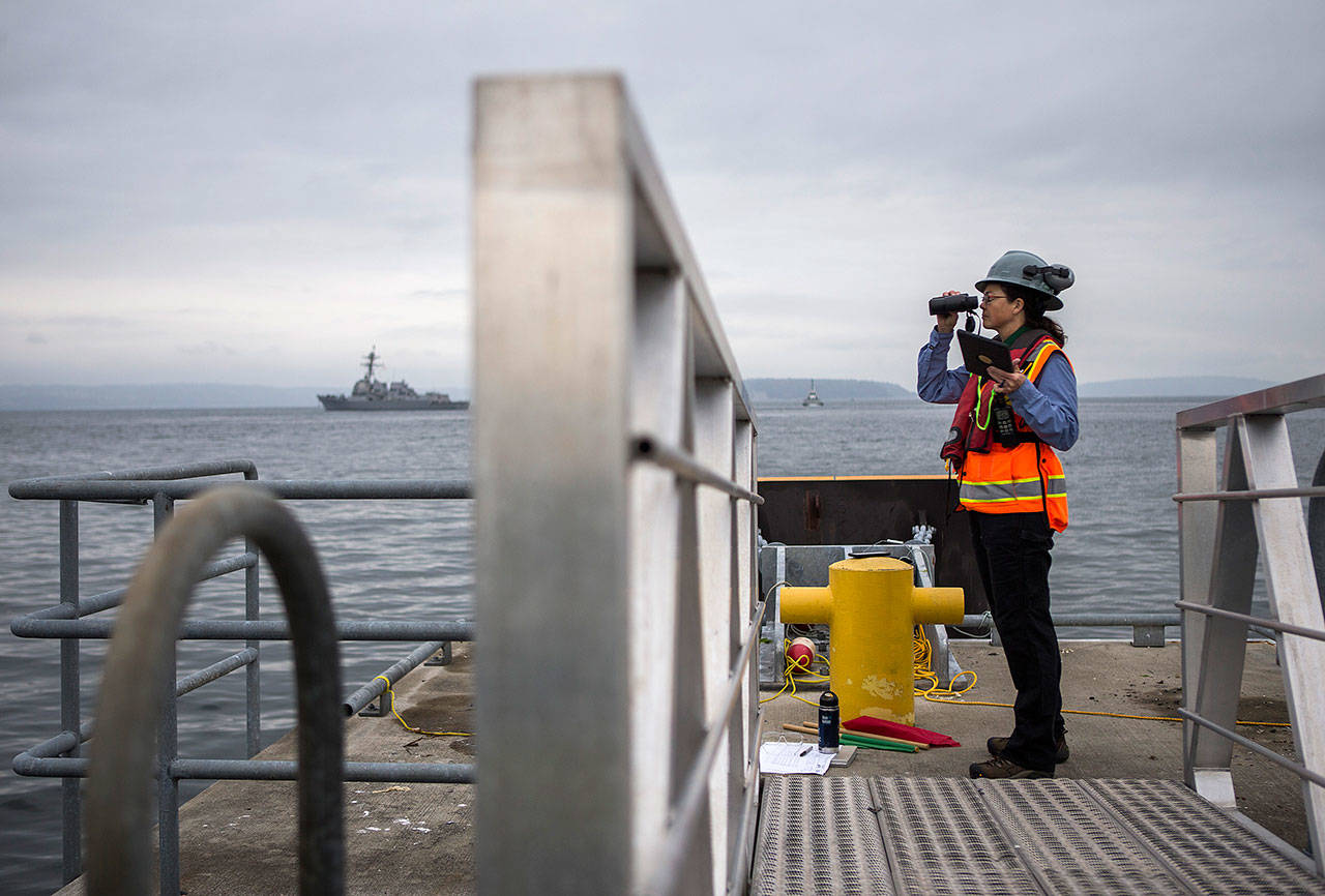 Project biologist Jean Olson watches for wildlife during construction at the Port of Everett. (Olivia Vanni / The Herald)