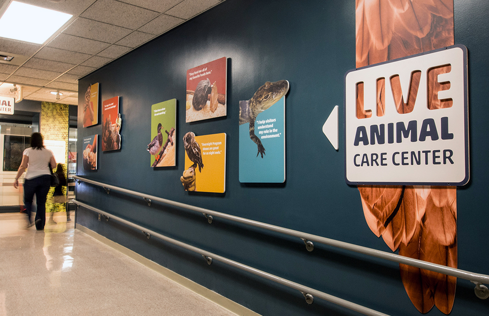 Live Animal Care Center — Museum of Science Boston