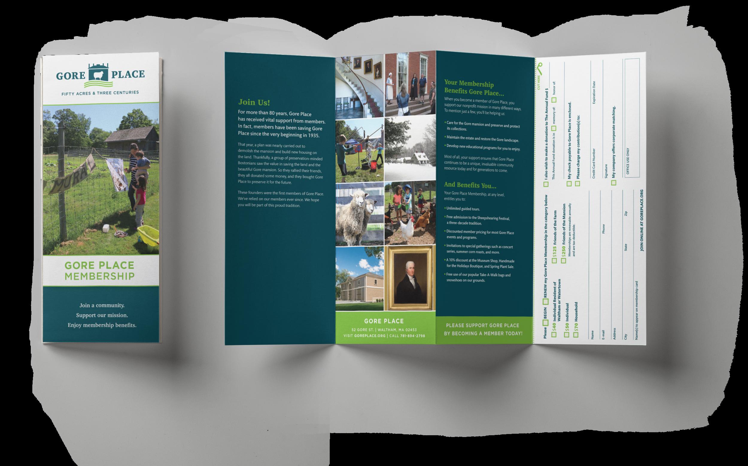gp_brochure (1).png