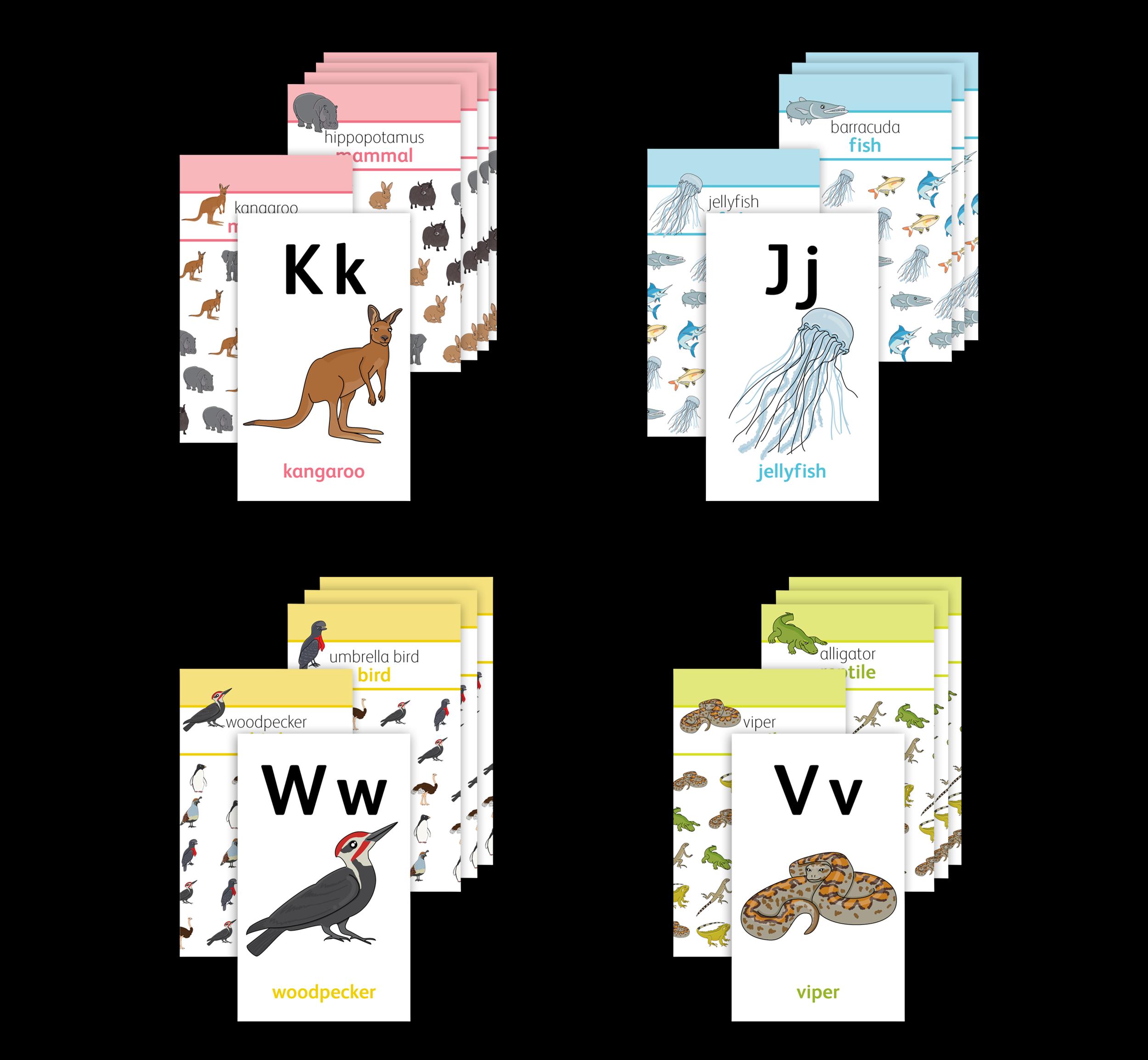 Early Education Alphabet Cards