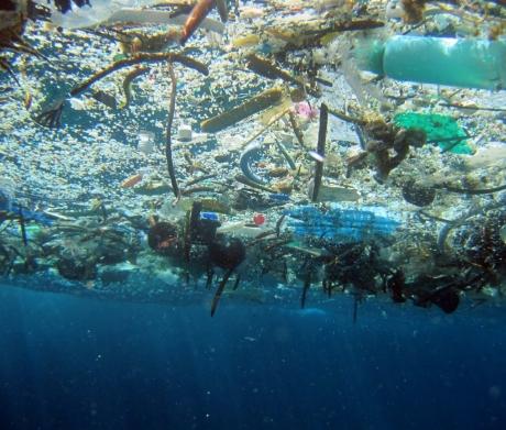 Photo credits: NOAA Marine Debris