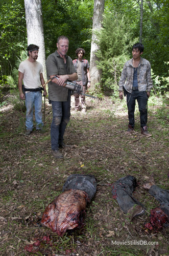 walking dead movie still.jpg