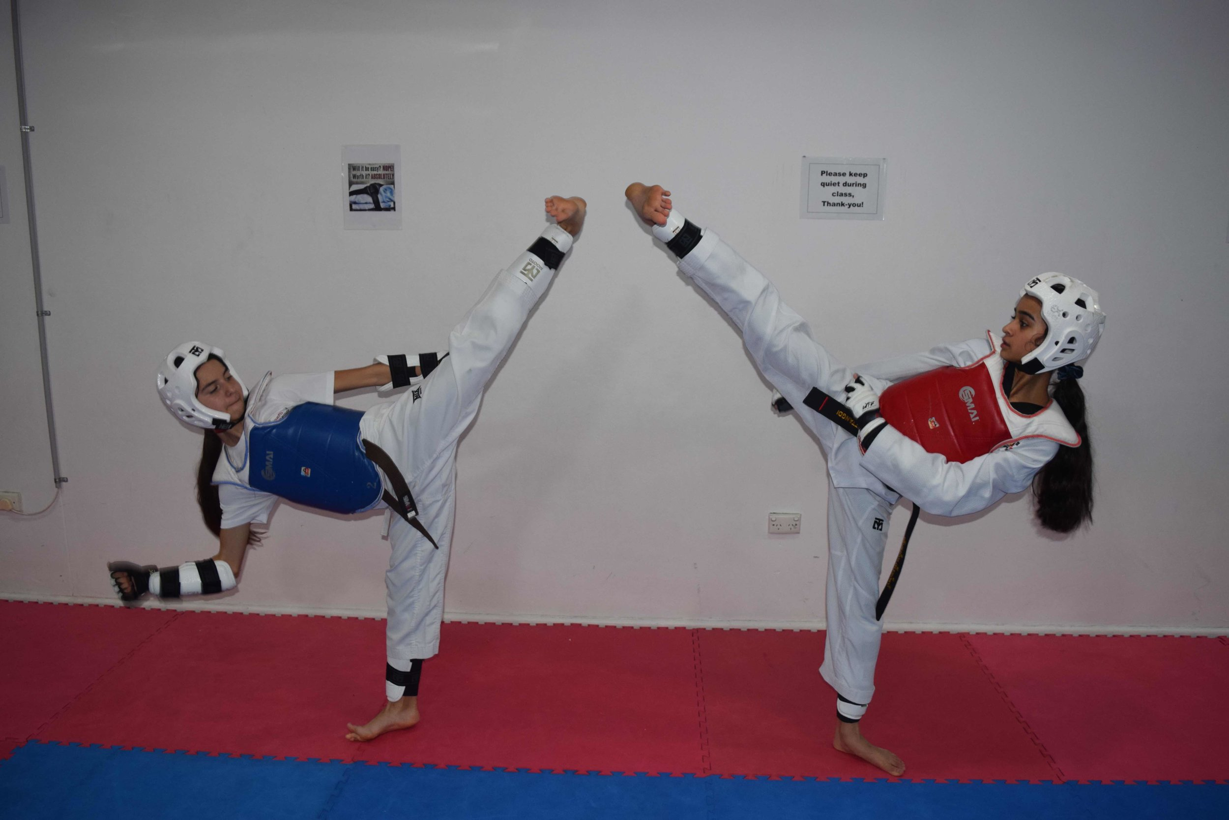 Facing Taekwondo Kicks with Sparring Gear 1.jpg