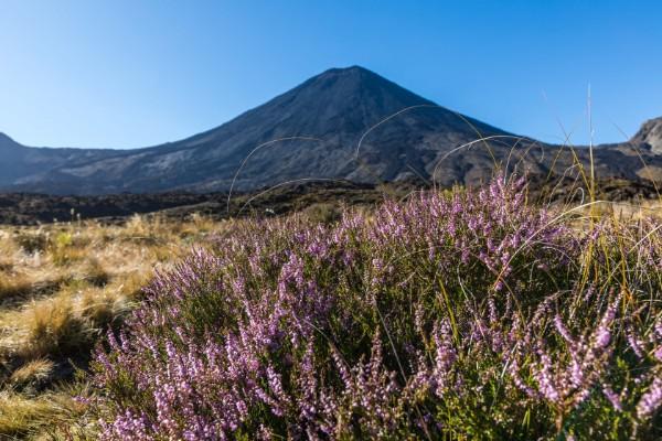 Tongariro images 1.jpg