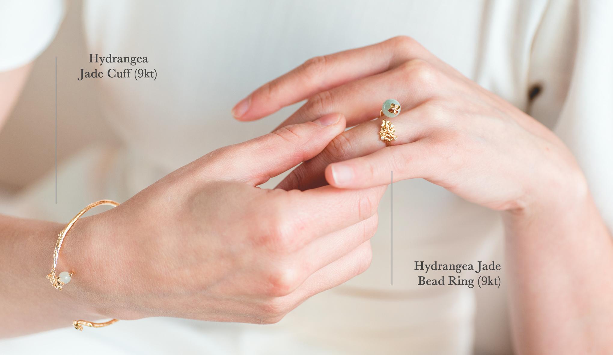 Choo Yilin Hydrangea Collection