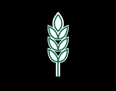 agro-processingv2.png