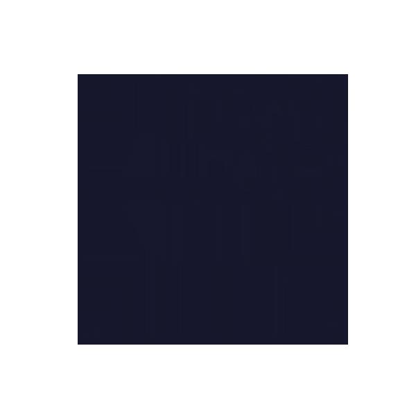BNW_Logo_blau_small.png