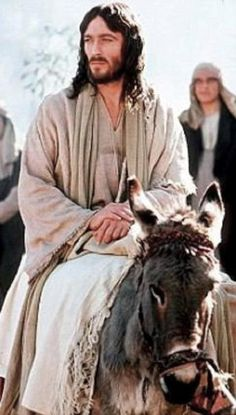 jesus on a donkey.png