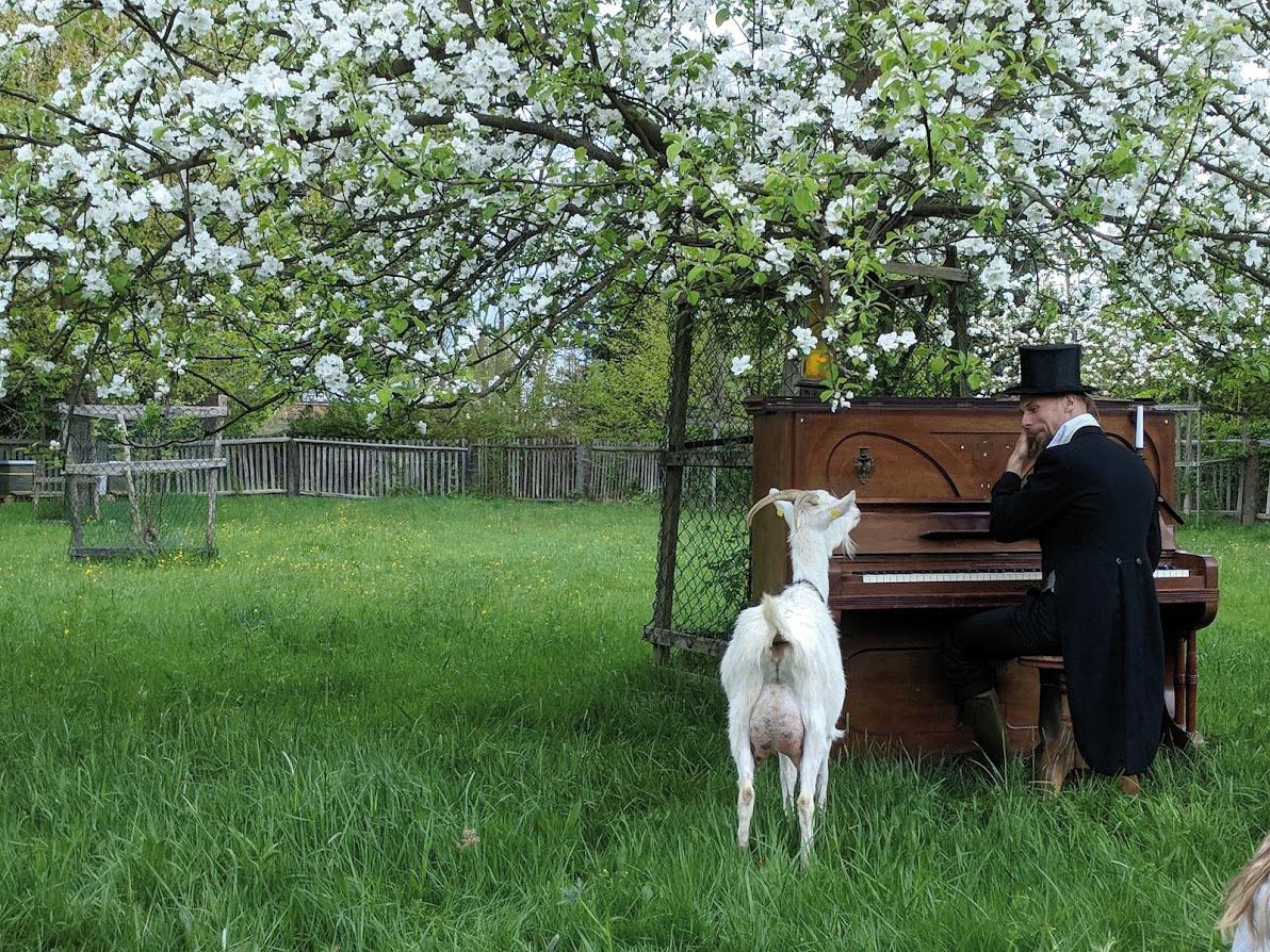 Apfelblütenfest des Wunder Land e.V. auf der Pfarrobstwiese Wachau, 2018   Foto © ORLA e.V.