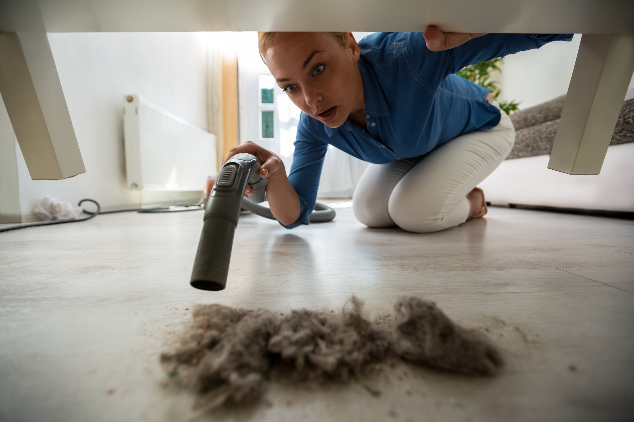 Do you have a lot of dust in your home? -