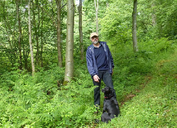 Walking through our woods, mostly planted by Will Bullough 25 years ago
