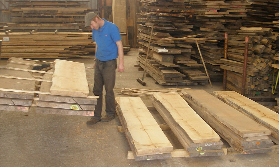 Selecting Dry Sycamore for an order