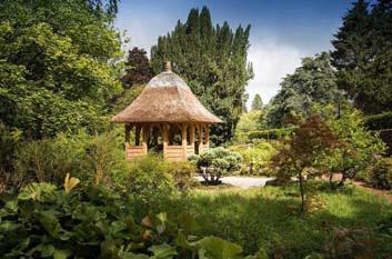 english-green-oak-used-at-dumfries-house.jpg