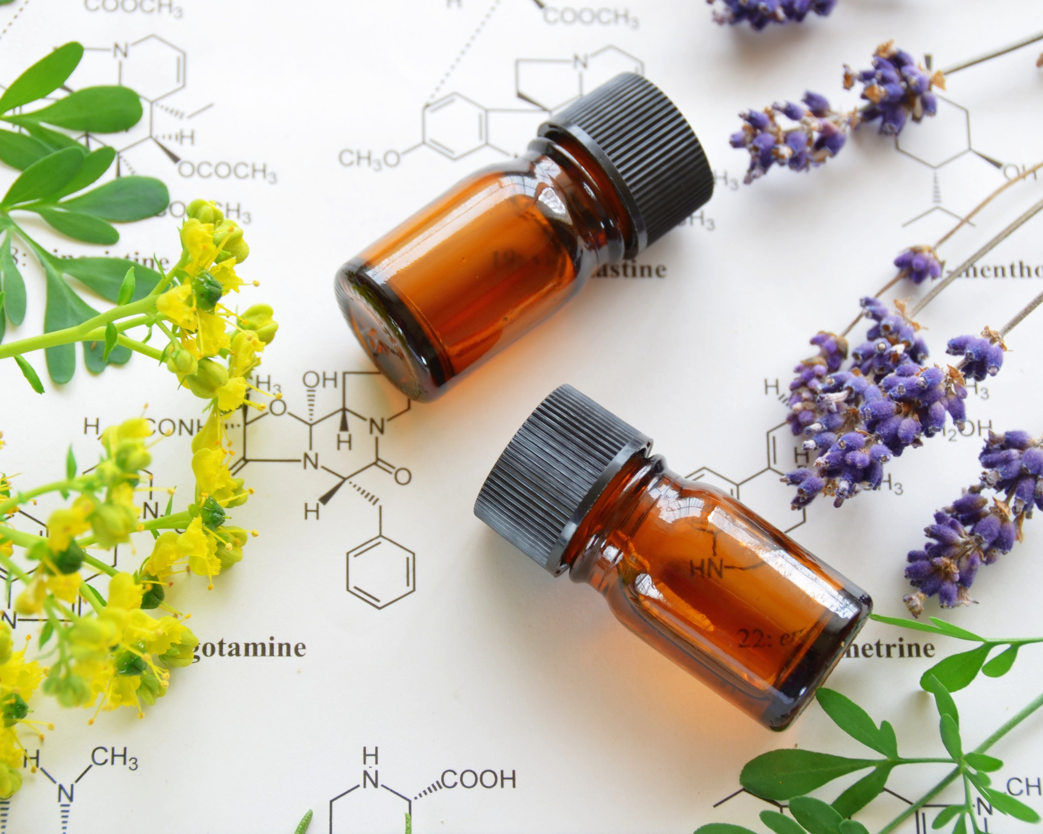 Aromatherapy - Essential oil Massage - Zeina Raya's naturopathic practice