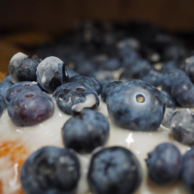 Bredeweg Blueberries return to Red Coach Donuts! Keep an eye out for our treats featuring these delicious fruits, grown right here in Southwest Michigan! • • #blueberries #donuts #redcoachdonuts #pastries #cafe #coffee #michiganmade #swmi #stevensville #michiganblueberries #local