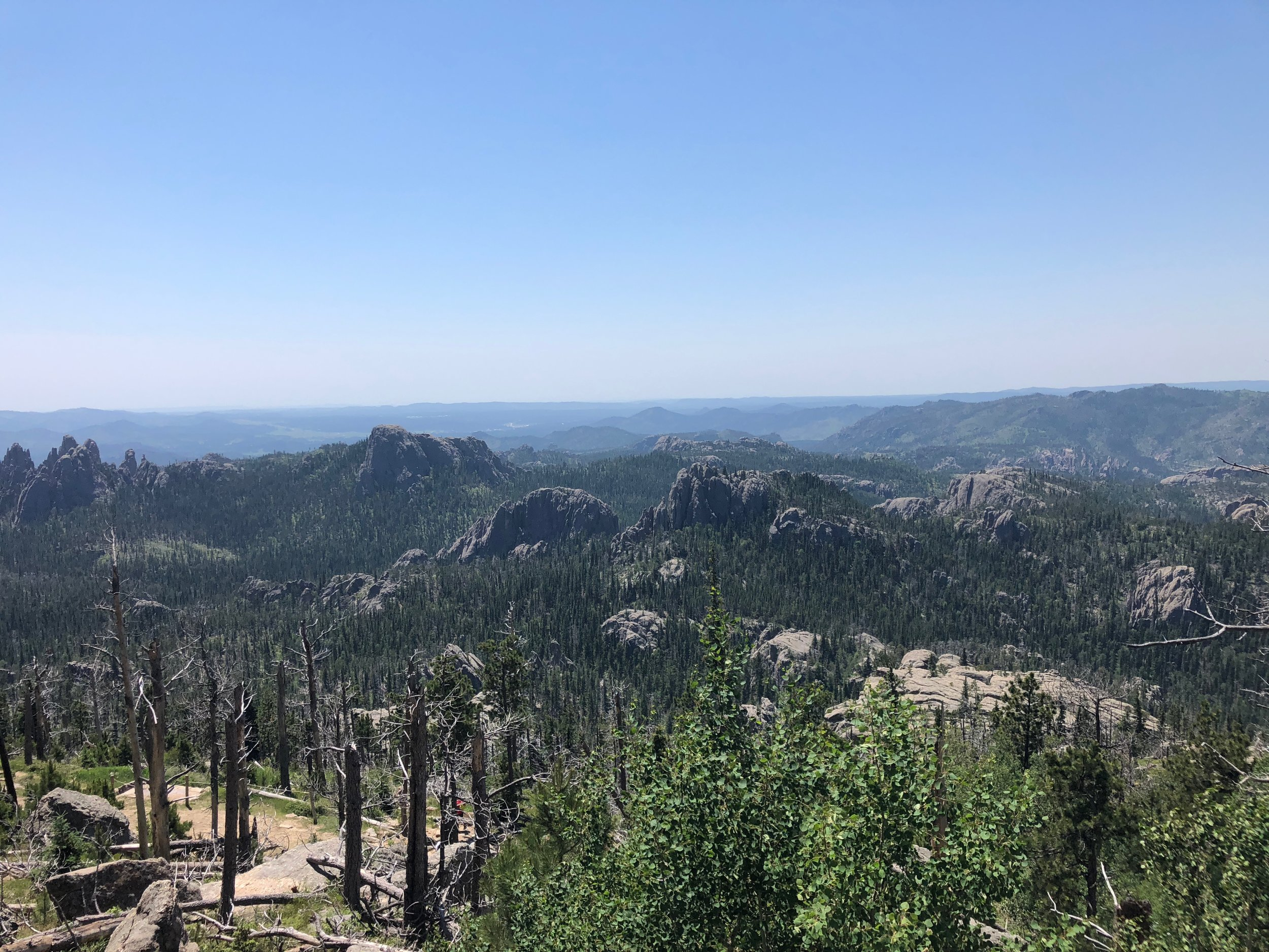 A view from the Black Elk Trail