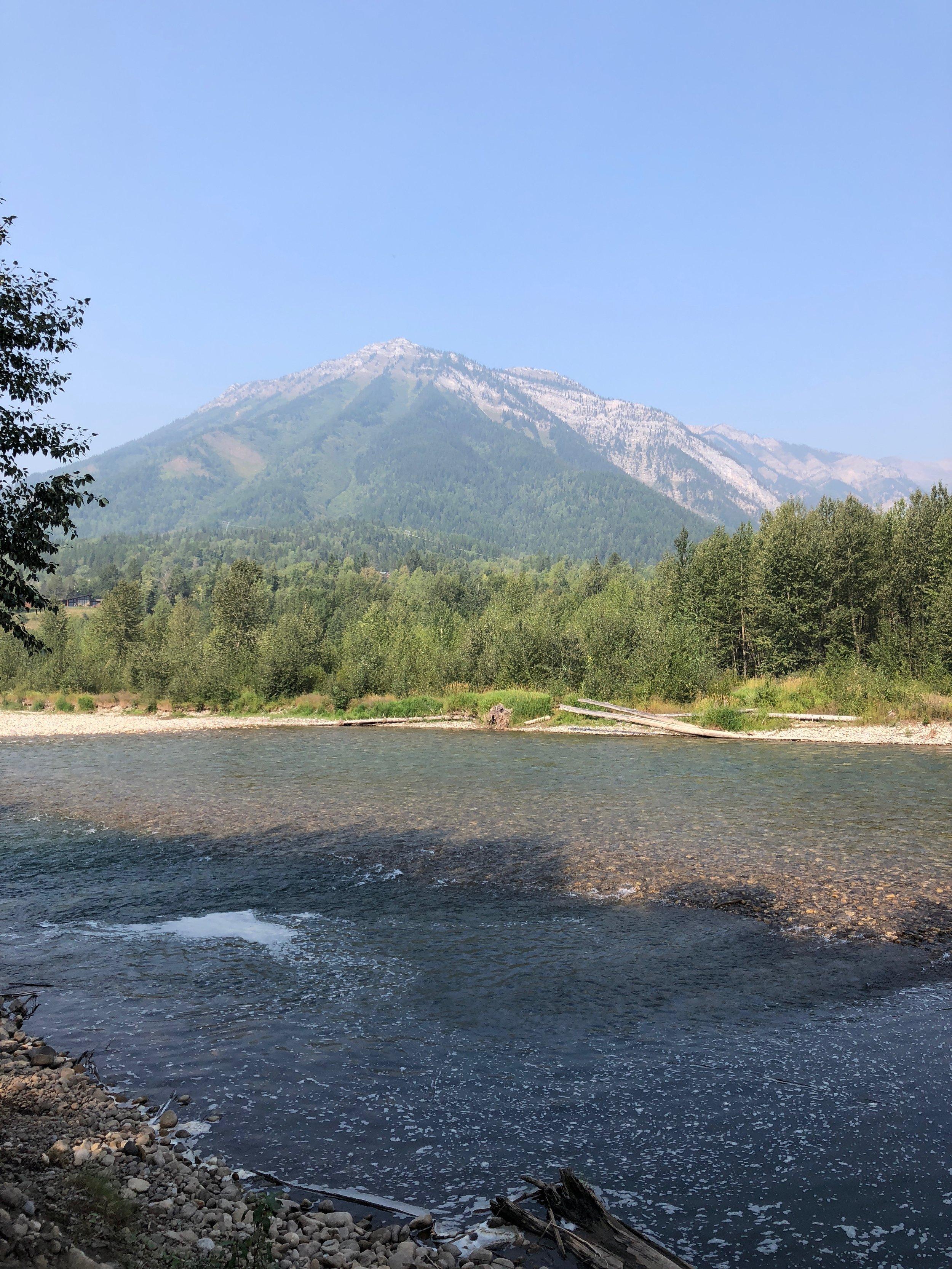 The Elk River runs right through Fernie